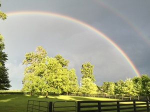 I caught this last evening, looking across my front pasture.  A good reminder of Who is in control.